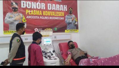 Bantu Pasien Covid-19, Personel Polres Bojonegoro Donor Plasma Konvalesen ke UDD PMI